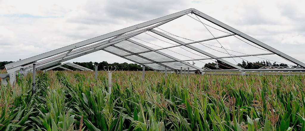 Shelter of the research area of the field with tents for agriculture