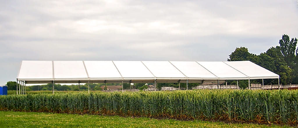 Use of industrial tents in agriculture