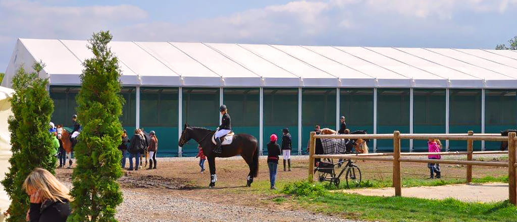 Awning arenas for horses